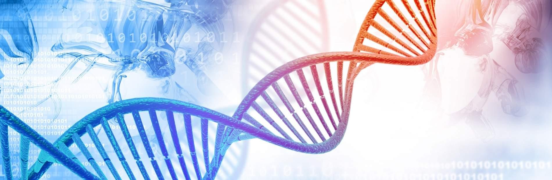 genetic testing dna