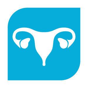 Uterus - IVF