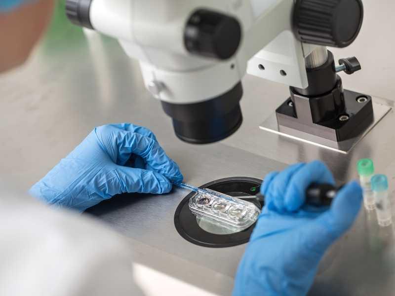 fertility clinic research